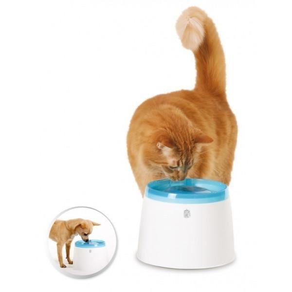 fontaine a eau chat