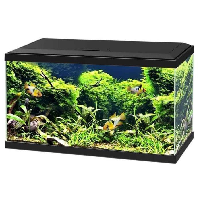 aquarium 60 litres
