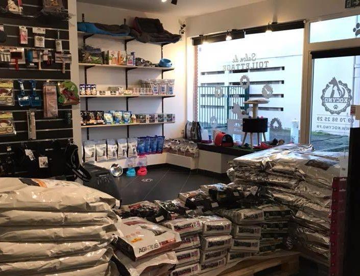 boutique accessoire chien