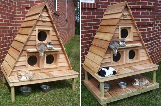 cabane pour chat exterieur