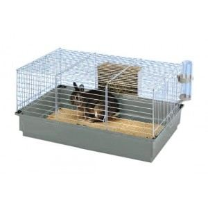 cage pour lapin nain