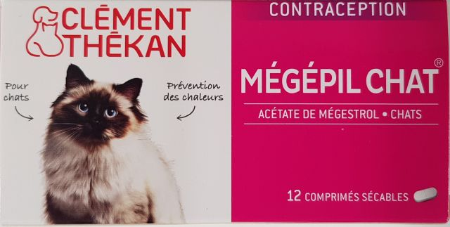 contraception pour chat