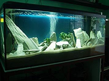 deco aquarium pierre