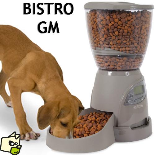 distributeur de croquettes pour chien