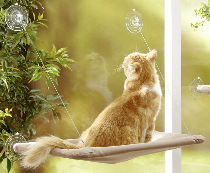 hamac fenetre pour chat