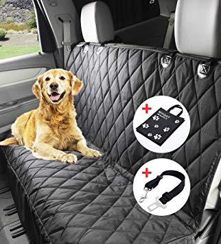 protection siège voiture chien