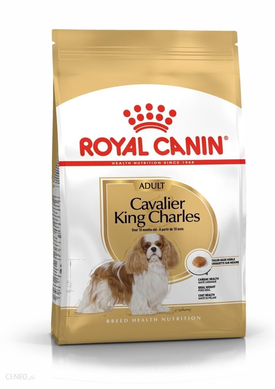 royal canin cavalier king charles