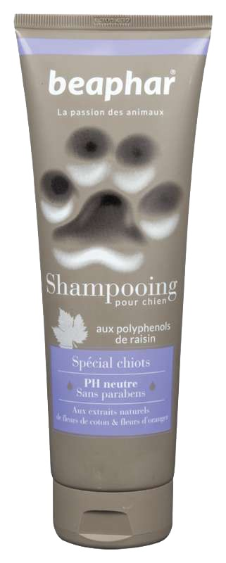 shampoing chiot